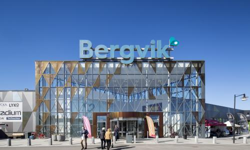 Bergvik 01